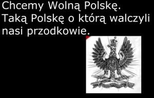 Chcemy wolna Polske