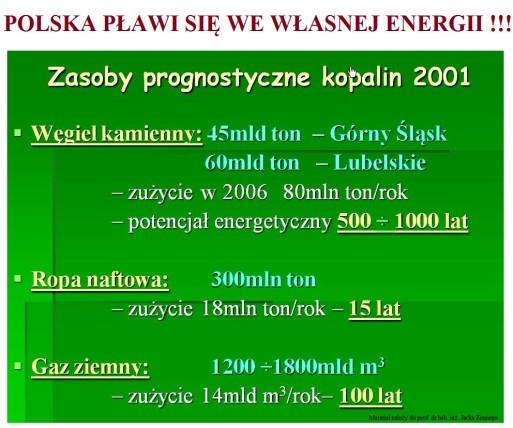 Polska plawi sie we wlasnej ehergii