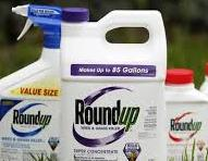 Poisonous Roundup