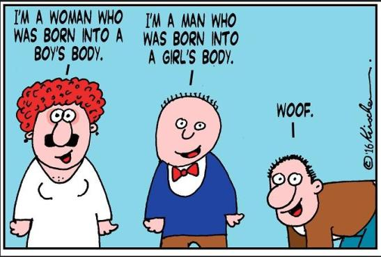 Transgender woof