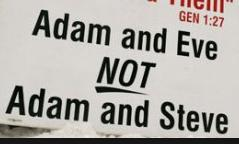 Adam & Eve not Adam & Steve