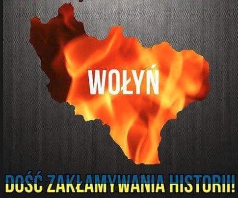 Wolyn12