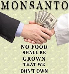 food-owned-by-monsanto