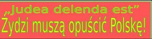 zydzi-musza-opuscic-polske2