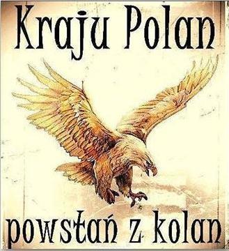 Kraju Polan powstan z kolan3