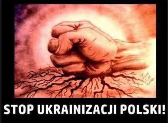 Stop ukrainizacji Polksi-duze