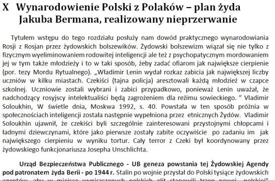 Wynarodowienie Polski